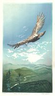Matt Brown Woodblock Print Osprey Over The Connecticut