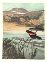 Matt Brown Woodblock Print Red-Winged Blackbird, 4th State